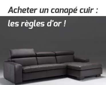 Canap but pour un salon simple et moderne for Nettoyer un canape cuir